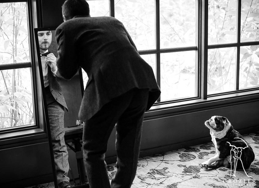 dog watches bow tie at Salish wedding