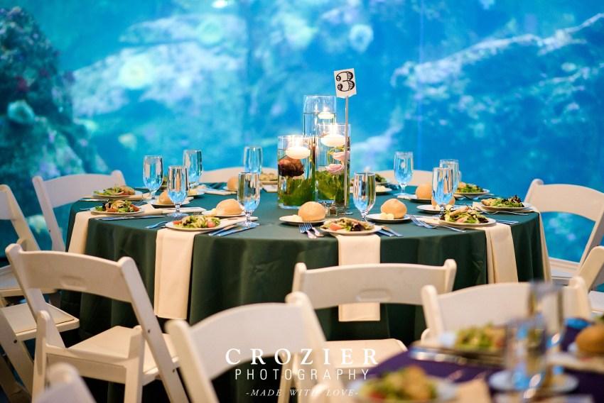 Seattle aquarium reception