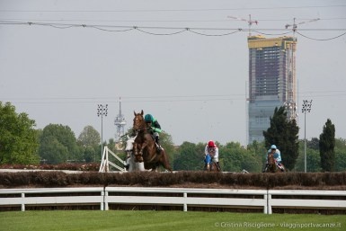 Steeple Chase-10