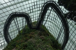 Gardens by the Bay - Cloud Forest