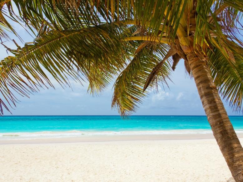 cshow Kreuzfahrt-Angebote von TUI Cruises