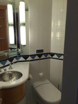 Badkamer 2 - toilet
