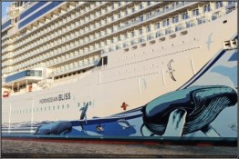 09-hull-of-norwegian-bliss-in-papenburg