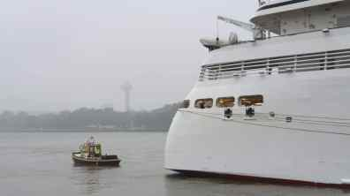 AIDAperla Seabourn Ovation 36