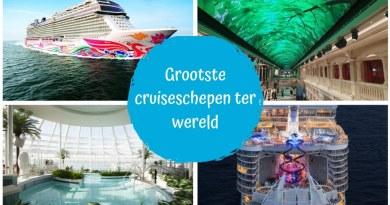 Wat zijn de grootste cruiseschepen van dit moment?