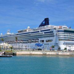 Norwegian Cruise Line participará en FITUR para presentar sus principales novedades