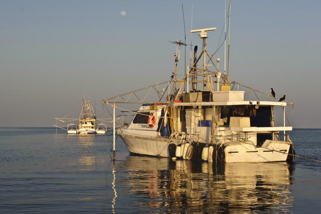 Fishing boats at Bramble Cay.
