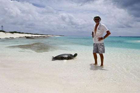 Diamond Islets east diamond cay injured turtle