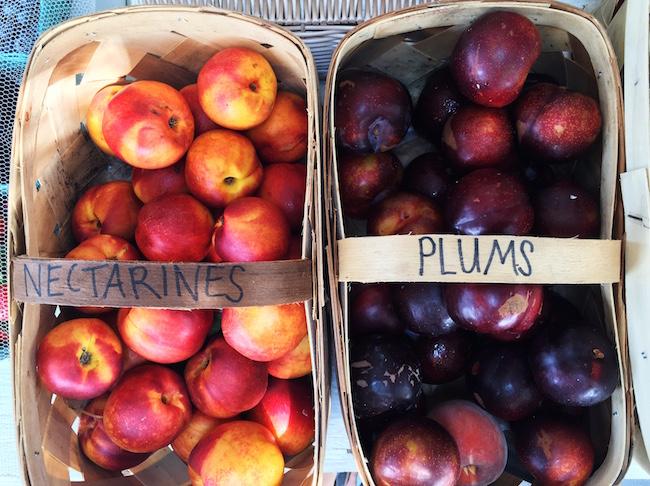 crunchy-kat-nectarines-plums