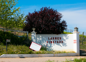 Larner Winery