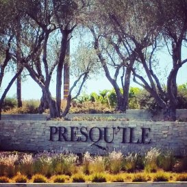 The Beautiful Presqu'ile Vineyards