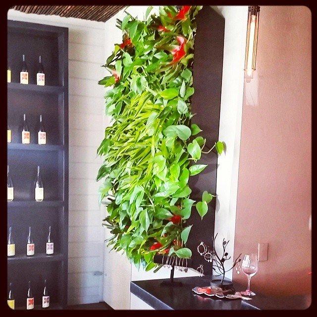 The beautiful Kaena tasting room