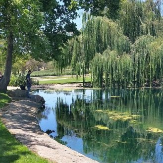 The pond at Bridlewood