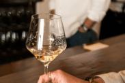 Jamie Slone 2013 Sauvignon Blanc