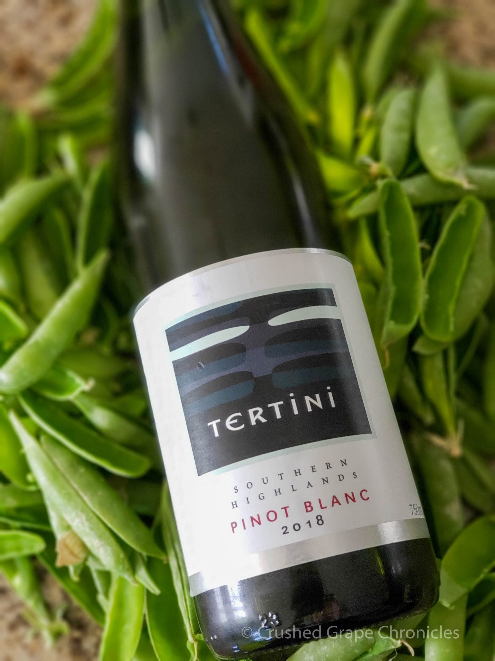 Tertini Pinot Blanc amidst the pea shells