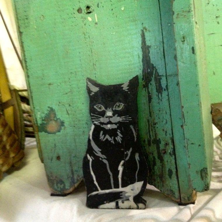 RTVM Cat
