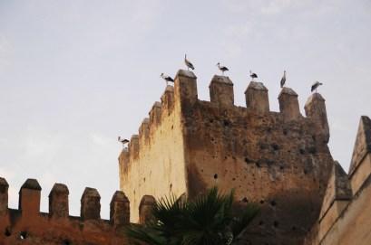 Marrocos-01