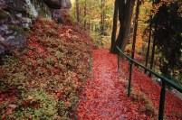 O Outono em Praga