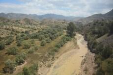 argelia-33