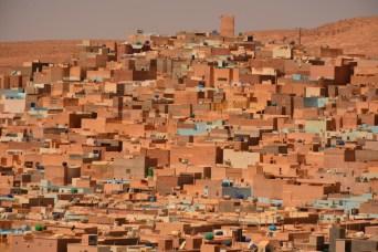 argelia-36