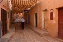 argelia-40