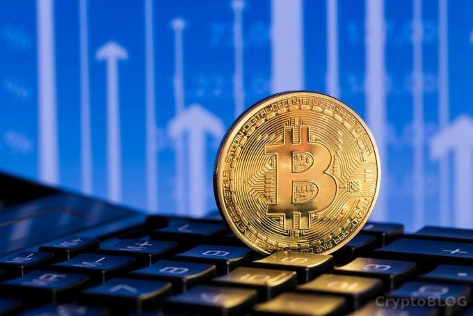 Количество биткоин-адресов увеличилось почти на 7% всего за неделю