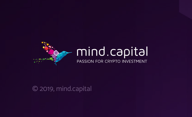 Mind Capital – Old investment project