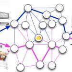 Top 11 Blockchain APIs for Web Developers