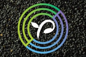 Circle Poised to Acquire Equity Crowdfunding Platform SeedInvest