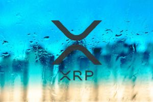 Ripple's XRP Last Three Months Wrapped – Most Promising Future Competitor Against BTC