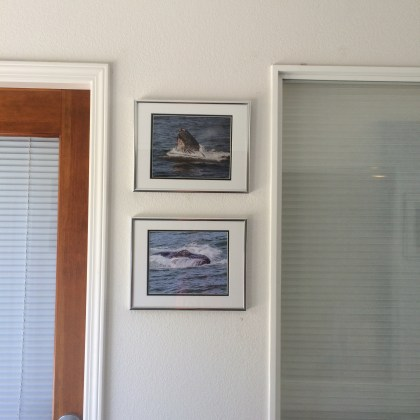 Quarry_Cove_Gallery_Shows_shot_by_Mark_Bray_IMG_7007
