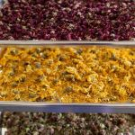 Crystal Hills Organics Organic Botanicals