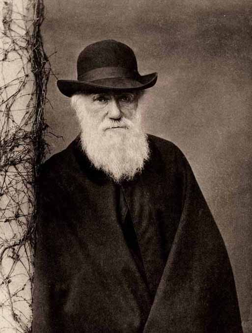Image result for Charles Darwin