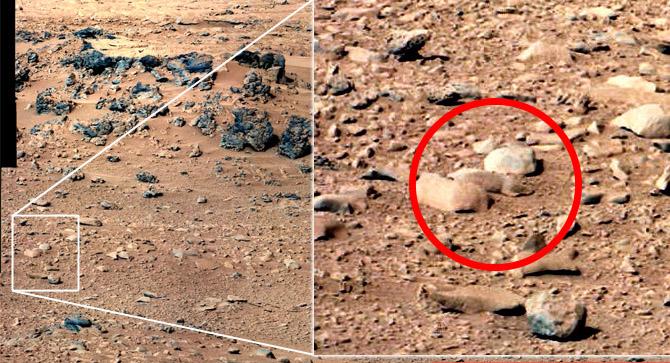 Lemming su Marte?