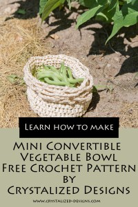 Mini Convertible Vegetable Bowl Free Crochet Pattern by Crystalized Designs