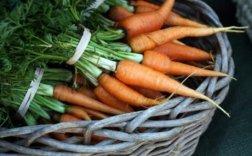 Brockman carrots