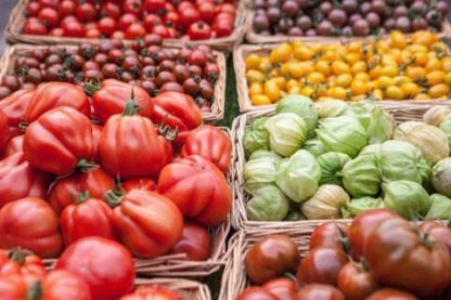 Wild Country: Tomatoes, tomatoes & more tomatoes