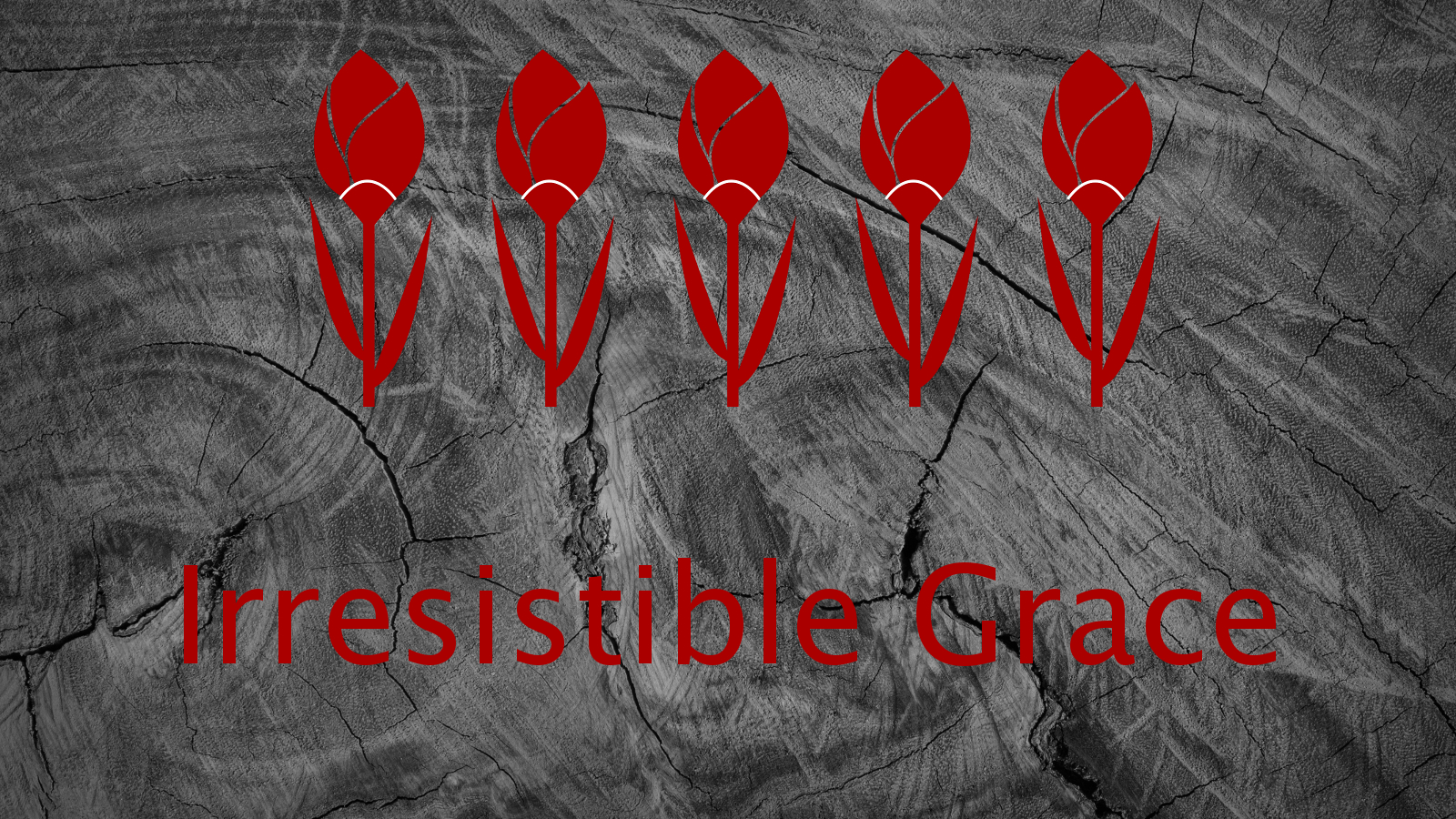 Irresistible Grace