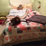 Longarm quilt for Kelli
