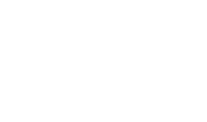 Avensure logo white