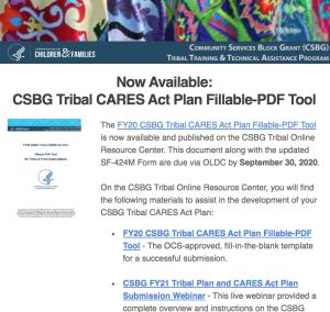 CARES Act Plan Fillable PDF Tool 082520
