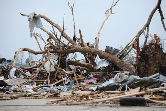 Joplin Tornado 345 shows an uprooted old tree, stripped of leaves.