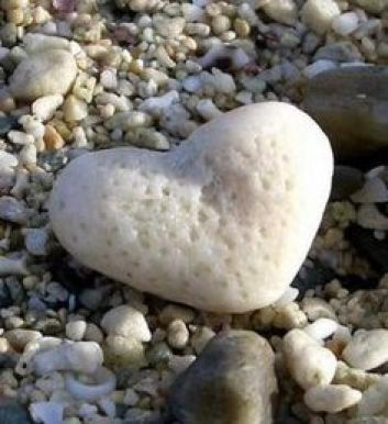 A white stone shaped like a heart