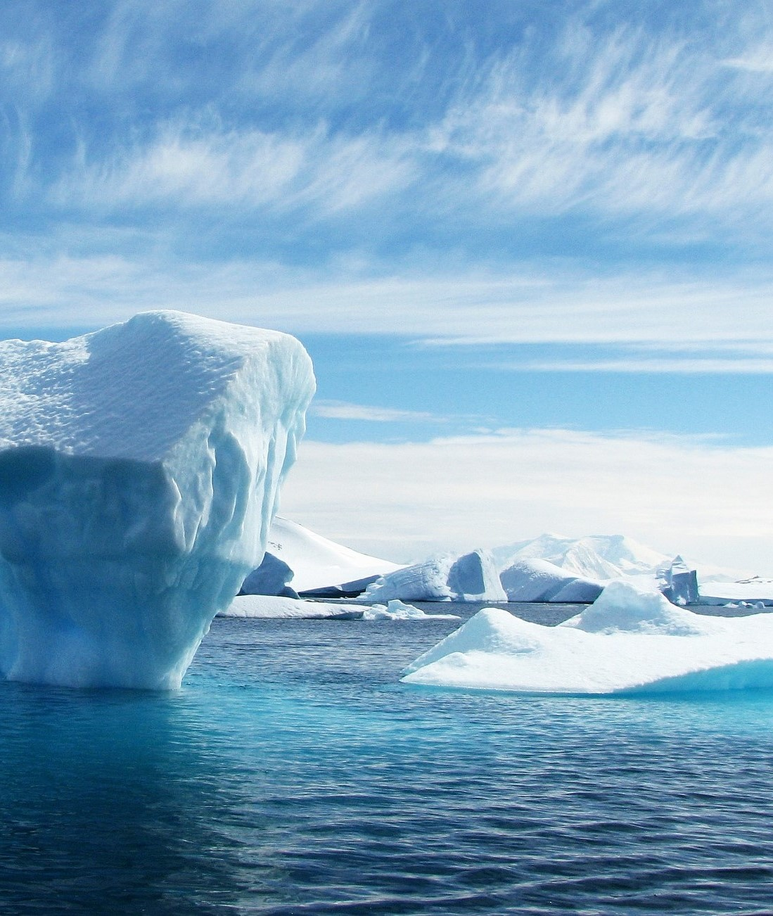 CSCD's Webinar Series – Fear of a New Cold War in the Arctic? January 21st, 2021