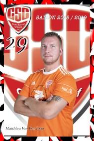 #29 Matthieu VAN DER LAAN