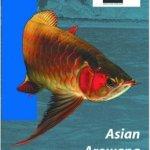 AsianArowana  - The Dragon Fish of Southeast Asia