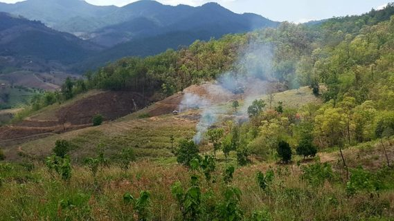 fires sending smoke up around farmland