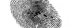 OEMS Policy Change - Agency Guidance: Required Fingerprint Based Background Checks