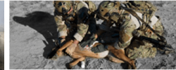 Tactical Canine Casualty Care