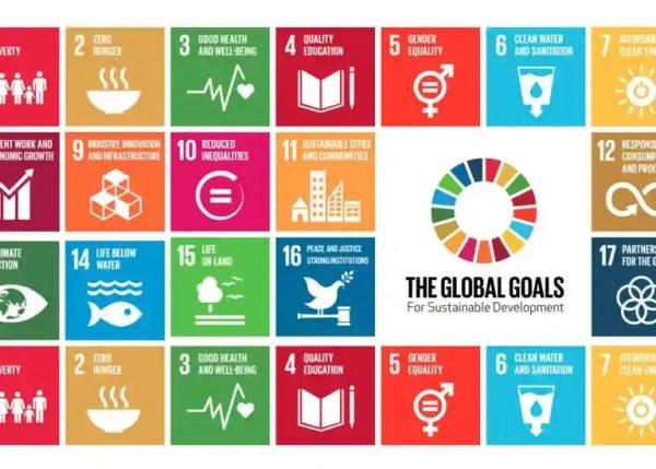 OEWG on SDGs - Csm4Cfs